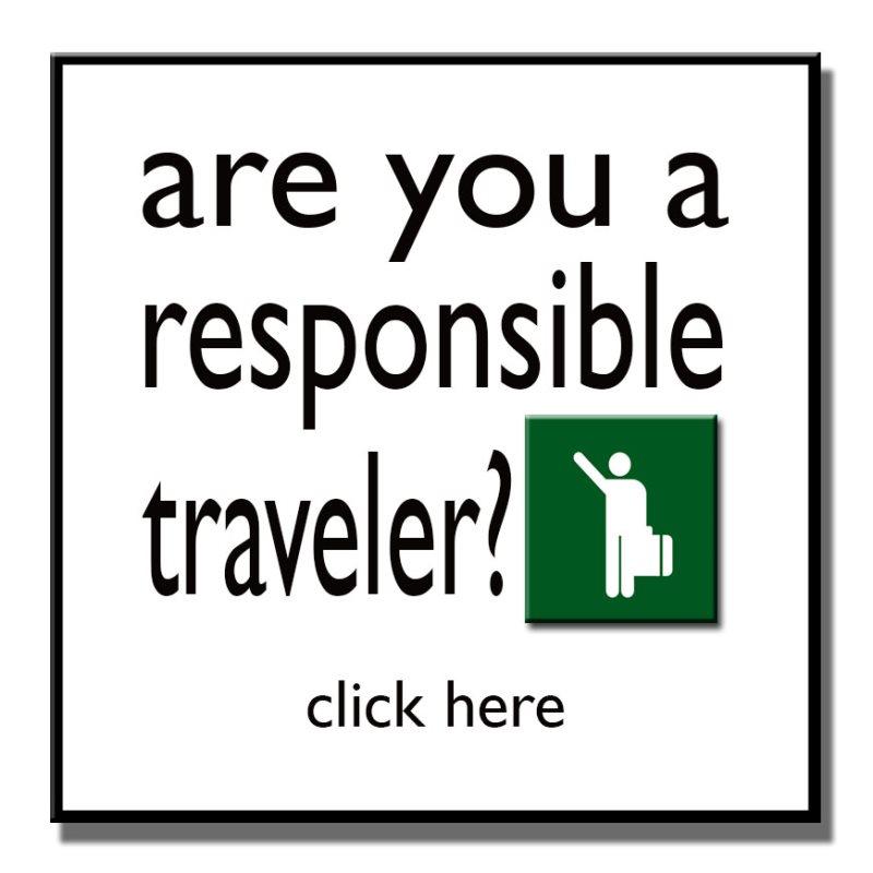 traveler button.jpg