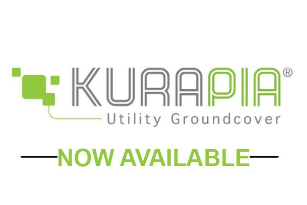 kurapia-now-available.jpg